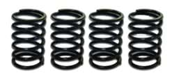 Picture of Upgraded valve springs
